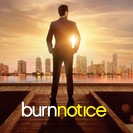 Burn Notice - All or Nothing artwork